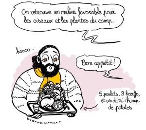 BD-Orchis-Militaris-nicola-elléa-bird